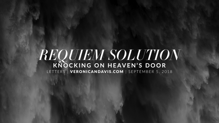 Veronica N. Davis Loreen Requiem Solution Kleerup Chicago Blog